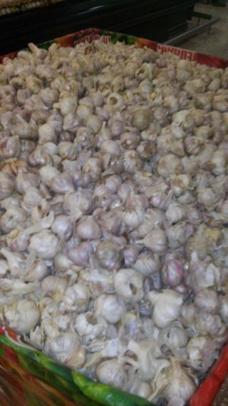 Garlic in chedraui