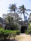 Palms_in_smaller_courtyard